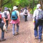 登山道を歩く登山者 装備はさまざま