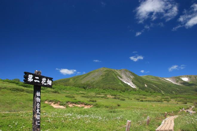 大雪山系 緑岳