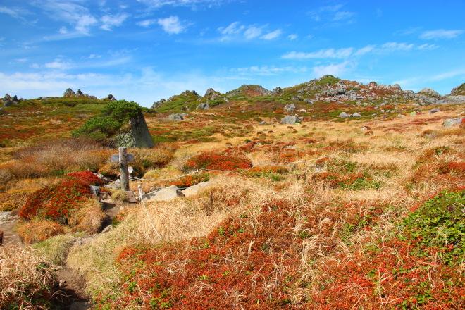 トムラウシ山 南沼キャンプ指定地