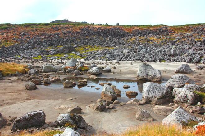 南沼キャンプ指定地近くの枯れた沼
