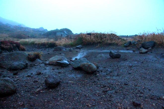 弱い雨が降った後のテントスペース