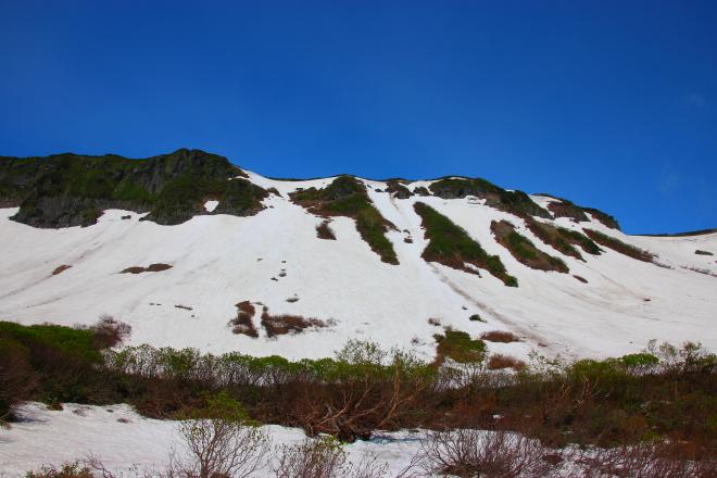 高根ヶ原の斜面についた落石の痕