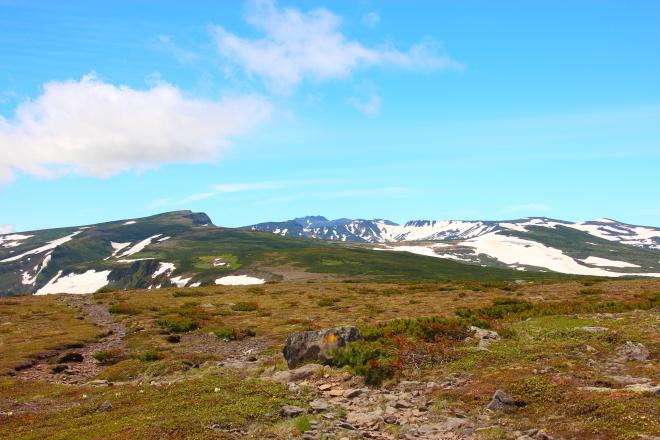 高根ヶ原から見た忠別岳・トムラウシ山